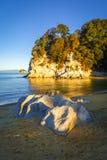 Liten vik på solnedgången i Abel Tasman National Park, Nya Zeeland Royaltyfri Bild