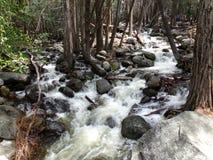 Liten liten vik, vatten som applåderar över, vaggar nära Bridalveil nedgångar - den Yosemite nationalparken, Sierra Nevada, Kalif royaltyfria bilder