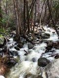 Liten liten vik, vatten som applåderar över, vaggar nära Bridalveil nedgångar - den Yosemite nationalparken, Sierra Nevada, Kalif Arkivfoto