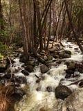 Liten liten vik, vatten som applåderar över, vaggar nära Bridalveil nedgångar - den Yosemite nationalparken, Sierra Nevada, Kalif Royaltyfria Foton