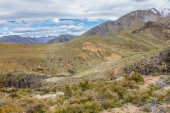 Liten vikkoja för Mt Somers Woolshed Arkivfoto