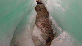 Liten vikspring mellan det smältande iskvarteret stock video