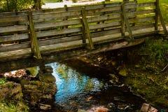Liten vikspring under en bro i träna under sommaren Fotografering för Bildbyråer