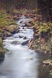 Liten vikvattenfall i skog Royaltyfri Fotografi