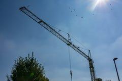 Liten vit Crane Frame Blue Sky Daylight konstruktionsbransch Royaltyfri Bild