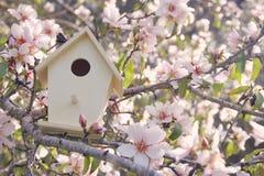 Liten voljär i vår över körsbärsrött träd för blomning arkivfoton
