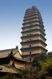 Liten Wild gåsPagoda - Xian - Kina. Royaltyfri Bild