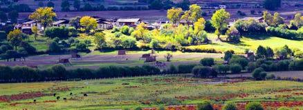 liten by yunnan för porslin Royaltyfri Foto