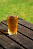 Liter av cider på pubbänk royaltyfri fotografi