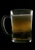 liter för cider fotografering för bildbyråer