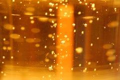 liter för cider Arkivfoto
