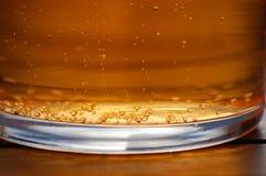 liter för cider Royaltyfri Fotografi