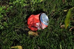LITER IN NATURE Stock Image