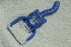 Litera de gato con la cucharada fotografía de archivo libre de regalías