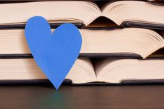 Literature love Royalty Free Stock Photo