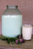 3 liters of milk and a glass of milk. With flowers of clover Stock Photography