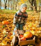 Litet barn med en skottkärra Royaltyfri Bild