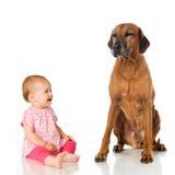Litet barn med hunden royaltyfria foton
