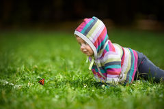 Litet barn och fjäril Arkivfoto