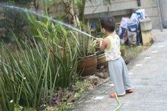 Litet barn som bevattnar trädgården Arkivfoton