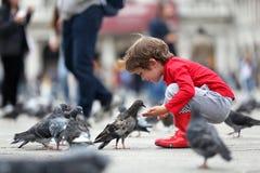 Litet barn som matar duvorna arkivfoto