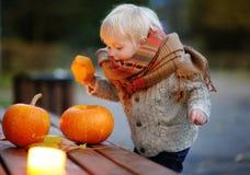 Litet barn som spelar med halloween pumpor Arkivfoton