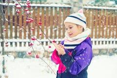 Litet barnflicka i vinterbyn som ser djupfrysta röda bär Arkivfoton