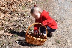 Litet barnflicka som samlar till korgen Royaltyfri Fotografi