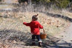 Litet barnflicka som samlar till korgen Royaltyfria Foton