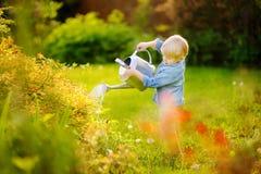 litet barnpojke som bevattnar växter i trädgården på den soliga dagen för sommar arkivbilder