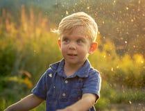 Litet barnpojke som spelar i sommarsol Arkivbilder