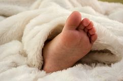 Litet barns fot i en vit filt royaltyfri foto