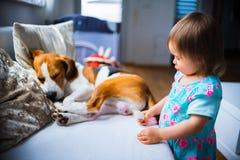 Litet behandla som ett barn flickan med beaglehunden som ligger på soffan arkivbilder