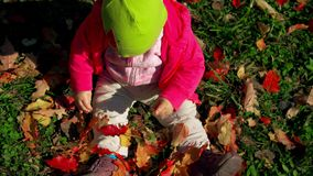 Litet behandla som ett barn flickan sitter orörligt på gräs, och blickar på de fallande sidorna parkerar in på ljus och solig tid lager videofilmer