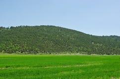 litet berg Arkivfoton