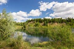 Litet berg som är bevuxet med träd, på bankerna av bilden Royaltyfria Foton