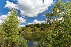 Litet berg som är bevuxet med träd, på bankerna av bilden Arkivbilder