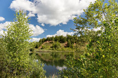Litet berg som är bevuxet med träd, på bankerna av bilden Royaltyfri Foto