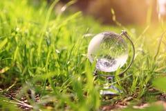 litet crystal jordklot för låg vinkel i gräset lopp och globalt frågebegrepp Royaltyfri Fotografi