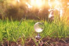 litet crystal jordklot för låg vinkel i gräset lopp och globalt frågebegrepp Arkivfoton