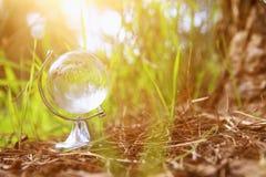 litet crystal jordklot för låg vinkel i gräset lopp och globalt frågebegrepp Arkivbilder