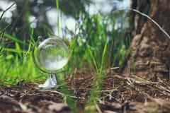 litet crystal jordklot för låg vinkel i gräset lopp och globalt frågebegrepp Royaltyfri Foto