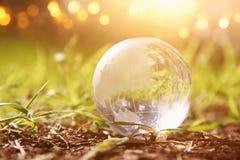 litet crystal jordklot för låg vinkel i gräset lopp och globalt frågebegrepp Fotografering för Bildbyråer