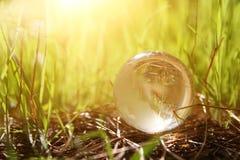 litet crystal jordklot för låg vinkel i gräset lopp och globalt frågebegrepp Arkivbild