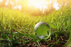 litet crystal jordklot för låg vinkel i gräset lopp och globalt frågebegrepp Royaltyfria Foton