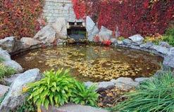 litet damm för höststadspark Arkivfoto