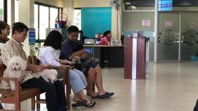 Litet djurt sjukhus av det Chiangmai universitetet stock video