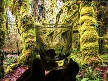 Litet exponeringsglas för bruk i drinkar Royaltyfri Fotografi