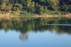Litet fartyg på Mekonget River Royaltyfria Bilder