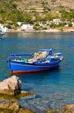 litet fartygfiske Royaltyfri Fotografi